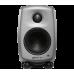 Genelec 6010A Active Speaker Silver 230V