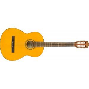 Fender ESC-105 Educational Series WN
